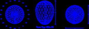 rose_egg_480a-80